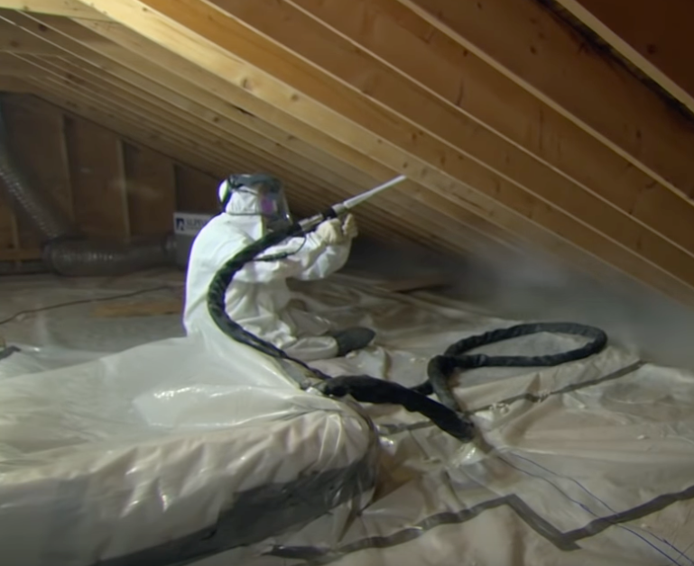 mold remediation in a house